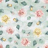 Teste padrão sem emenda da aquarela com as rosas no fundo verde da aquarela ilustração royalty free