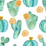 Teste padrão sem emenda da aquarela com composições das plantas carnudas, flores ilustração do vetor
