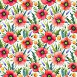 Teste padrão sem emenda da aquarela com papoilas Fundo floral Flores tiradas mão do verão imagens de stock royalty free