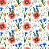 Teste padrão sem emenda da aquarela com papoilas Fundo floral Flores tiradas mão do verão fotos de stock