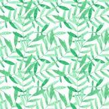 Teste padrão sem emenda da aquarela com ramos verdes no fundo branco ilustração stock