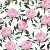 Teste padrão sem emenda da aquarela das peônias e dos ramos da planta ilustração royalty free