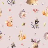Teste padrão sem emenda da aquarela do ouriço bonito dos desenhos animados do bebê, do esquilo e do animal para nursary, floresta Foto de Stock Royalty Free