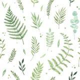 Teste padrão sem emenda da aquarela do vetor A mola está vindo botanical ilustração royalty free