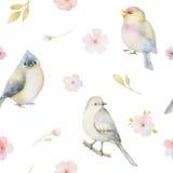 Teste padrão sem emenda da aquarela dos pássaros e das flores da mola Fotos de Stock
