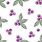 Teste padrão sem emenda da aquarela floral Imagens de Stock