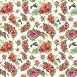 Teste padrão sem emenda da aquarela floral tropical com colibris e flores Pintura da aguarela Imagens de Stock
