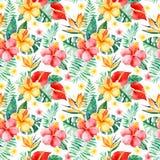 Teste padrão sem emenda da aquarela Handpainted com flores coloridos Imagens de Stock
