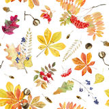 Teste padrão sem emenda da aquarela pintado à mão das folhas de outono Imagem de Stock Royalty Free