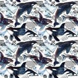 Teste padrão sem emenda da baleia de assassino ilustração do vetor