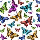 Teste padrão sem emenda da borboleta cor-de-rosa, vermelha, verde, amarela ilustração do vetor