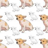Teste padrão sem emenda da chihuahua adorável ilustração do vetor