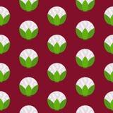 Teste padrão sem emenda da couve-flor Imagens de Stock Royalty Free