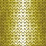 Teste padrão sem emenda da escala Fundo abstrato das telhas de telhado Textura verde do squama Fotografia de Stock
