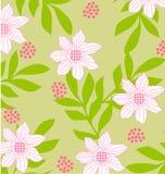 Teste padrão sem emenda da flor ilustração stock