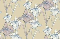 Teste padrão sem emenda da flor com íris Fotos de Stock Royalty Free