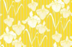 Teste padrão sem emenda da flor com íris Fotografia de Stock