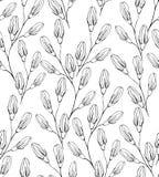 Teste padrão sem emenda da flor com campainhas Fotografia de Stock