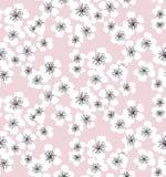 Teste padrão sem emenda da flor de Sakura em pálido - fundo cor-de-rosa ilustração do vetor
