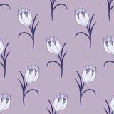 Teste padrão sem emenda da flor delicada com açafrões ilustração stock