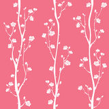 Teste padrão sem emenda da flor oriental da ameixa ilustração royalty free