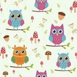 Teste padrão sem emenda da floresta com corujas bonitos Ilustração do vetor Imagens de Stock Royalty Free