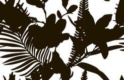 Teste padrão sem emenda da forma preta com as plantas tiradas das flores Foto de Stock Royalty Free