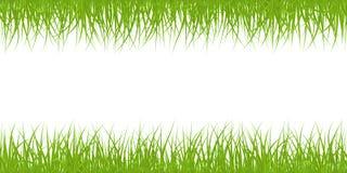Teste padrão sem emenda da grama Imagens de Stock