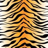 Teste padrão sem emenda da listra do tigre Pri do fundo da pele animal do vetor fotos de stock royalty free