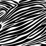 Teste padrão sem emenda da listra da zebra Pri do fundo da pele animal do vetor imagens de stock