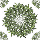 Teste padrão sem emenda da mandala grande e pequena do ramo de oliveira Ilustração do vetor Imagens de Stock