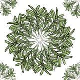 Teste padrão sem emenda da mandala grande e pequena do ramo de oliveira Ilustração do vetor Imagens de Stock Royalty Free