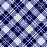Teste padrão sem emenda da manta de tartã Foto de Stock