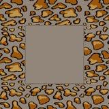 Teste padr?o sem emenda da pele do leopardo no fundo cinzento C?pia animal ilustração royalty free