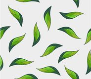 Teste padrão sem emenda da planta ilustração royalty free