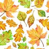 Teste padrão sem emenda da queda do outono do Aquarelle ilustração royalty free