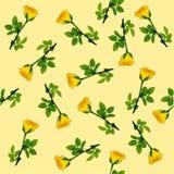 Teste padrão sem emenda da rosa do amarelo Foto de Stock Royalty Free