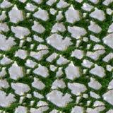 Teste padrão sem emenda da telha da grama e da rocha Imagem de Stock Royalty Free