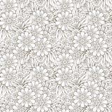 Teste padrão sem emenda da textura do fundo do design floral Imagens de Stock Royalty Free