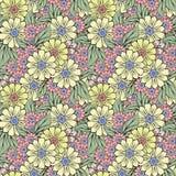 Teste padrão sem emenda da textura do fundo do design floral Fotografia de Stock Royalty Free