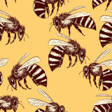 Teste padrão sem emenda das abelhas Fotografia de Stock Royalty Free