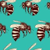 Teste padrão sem emenda das abelhas Foto de Stock