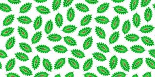 Teste padrão sem emenda das folhas coloridas estilizados Textura universal do boho popular Fundo decorativo floral decorativo tir ilustração royalty free