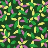 Teste padrão sem emenda das folhas coloridas na obscuridade - fundo verde ilustração do vetor