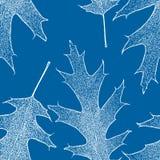 Teste padrão sem emenda das folhas congeladas do sicômoro ilustração royalty free