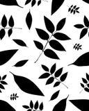 Teste padrão sem emenda das folhas das árvores Fotos de Stock