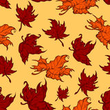 Teste padrão sem emenda das folhas de bordo vermelhas do outono Foto de Stock