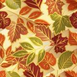 Teste padrão sem emenda das folhas de outono Fotos de Stock