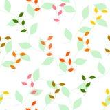 Teste padrão sem emenda das folhas de outono coloridas diferentes ilustração do vetor