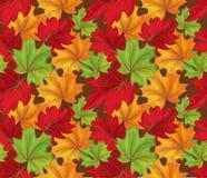 Teste padrão sem emenda das folhas de outono do esboço do vetor Fotos de Stock